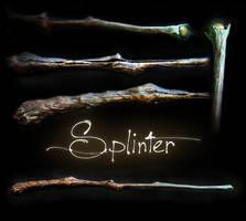 Splinter by Eclectixx