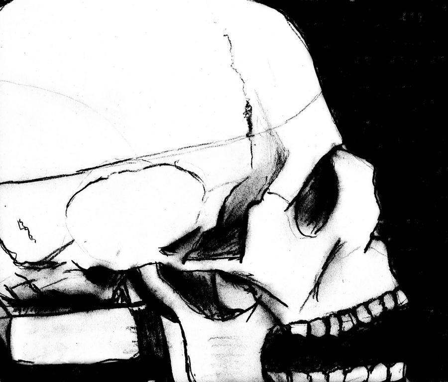 Skull (revisited) by MathewScotArt