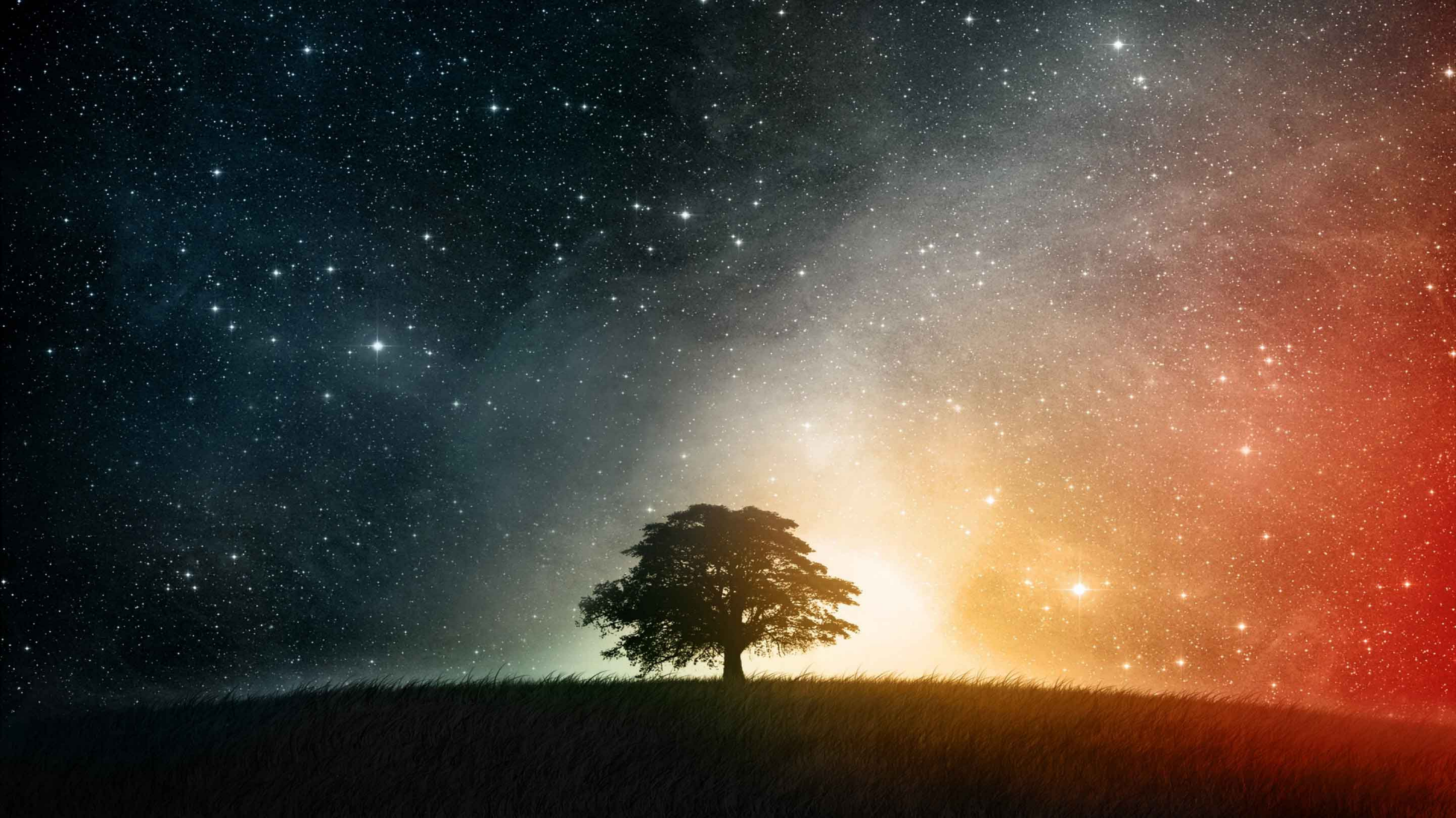 Tree and Stars original with original resolution by Linux-Shines