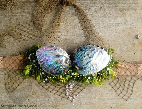 Abalone seashell bra