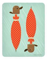 Platybrella by RoseyCheekes