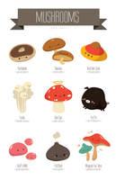 Mushroom Galore! by RoseyCheekes