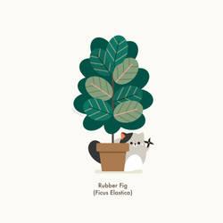 Cat vs Plant