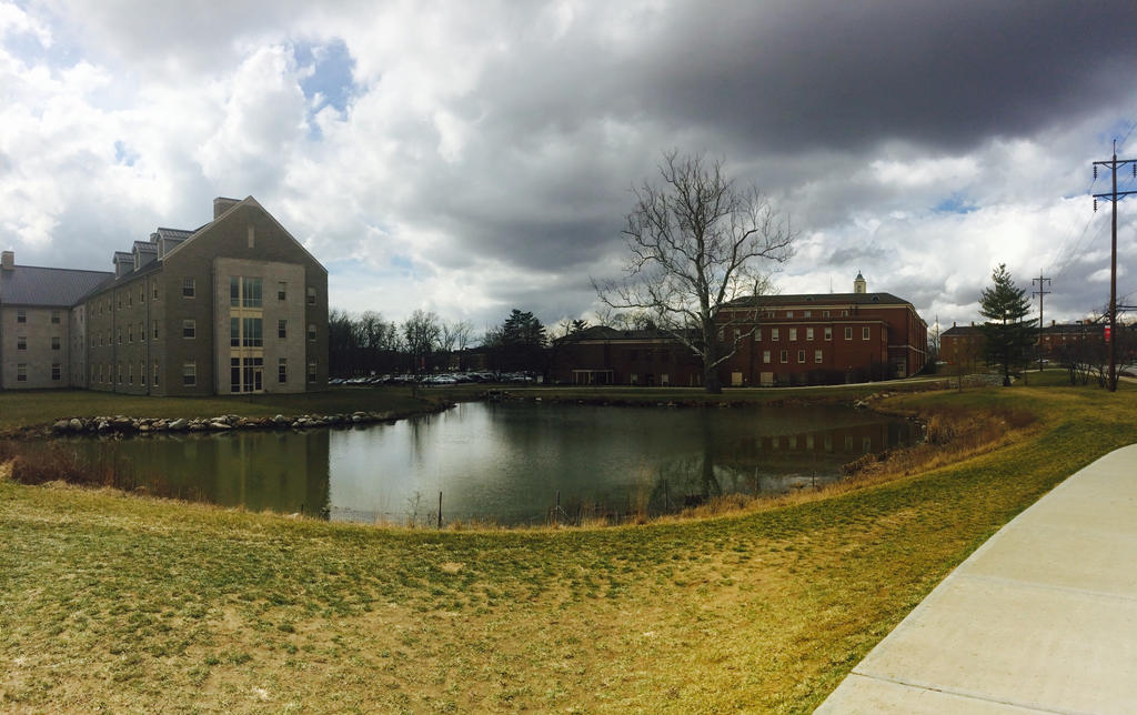 Miami University by fitore