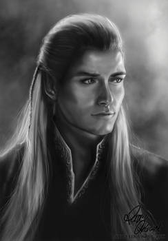 Legolas (The Lord of the Ring) - Photostudy