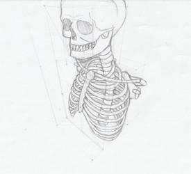 skull and torso