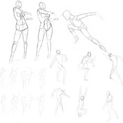 Weekly Anatomy Practice #8