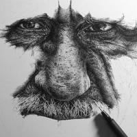 Burdened Wip (ink drawing)