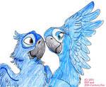RiO-Blu and Jewel