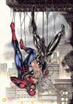 Spiderman and Blackcat