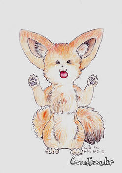 Here is a fennec fox!