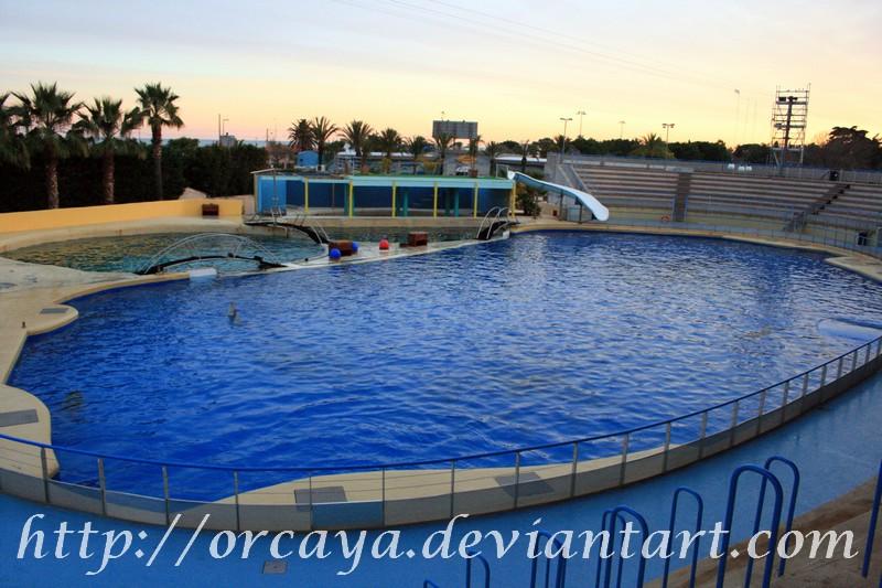 dolphin tank by orcaya on DeviantArt