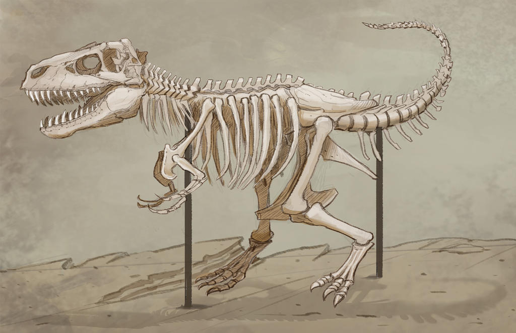 TRexSkeleton