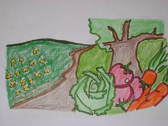 The vegetable garden by The-Last-Johnmurai
