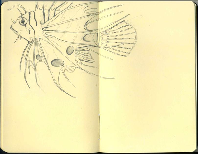Moleskine - LionFish by BrokenMasque