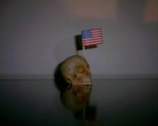 US Skull by dantealighieri