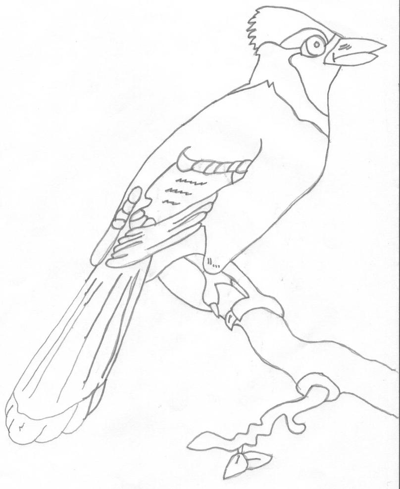 Color blue jay coloring pages for Blue jay coloring page
