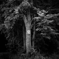 5 by BelcyrPiotr
