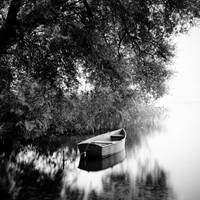 calm by BelcyrPiotr