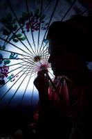 Geisha by Vasoula15