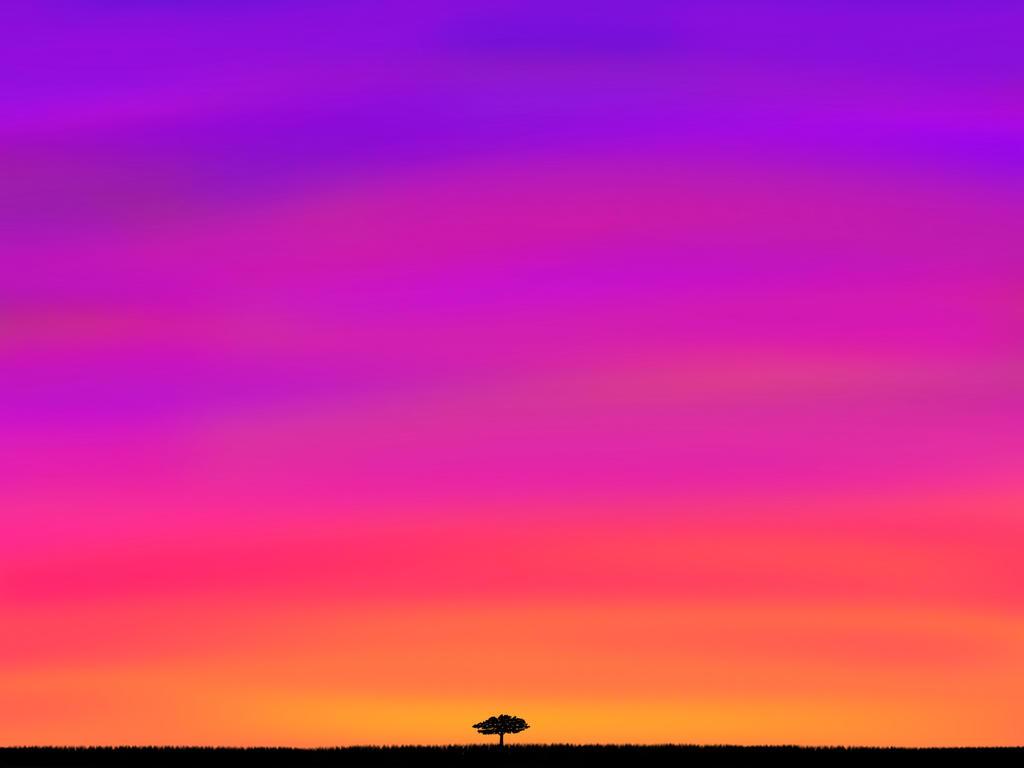 Sunset by FantasyArt99