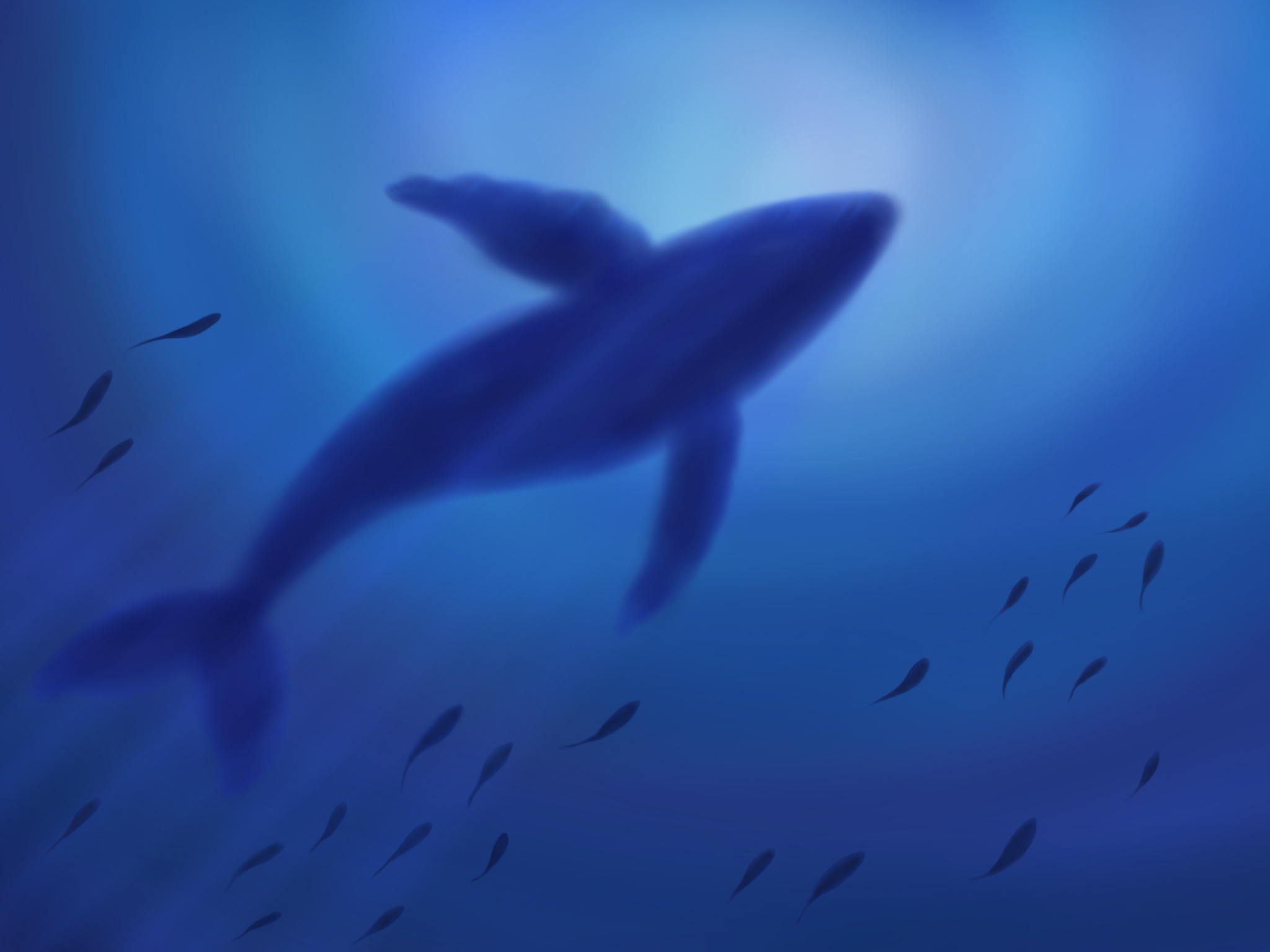 Under the Sea by FantasyArt99