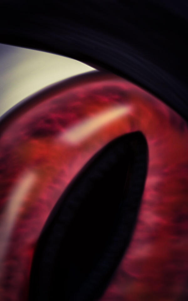 Eye See You by FantasyArt99