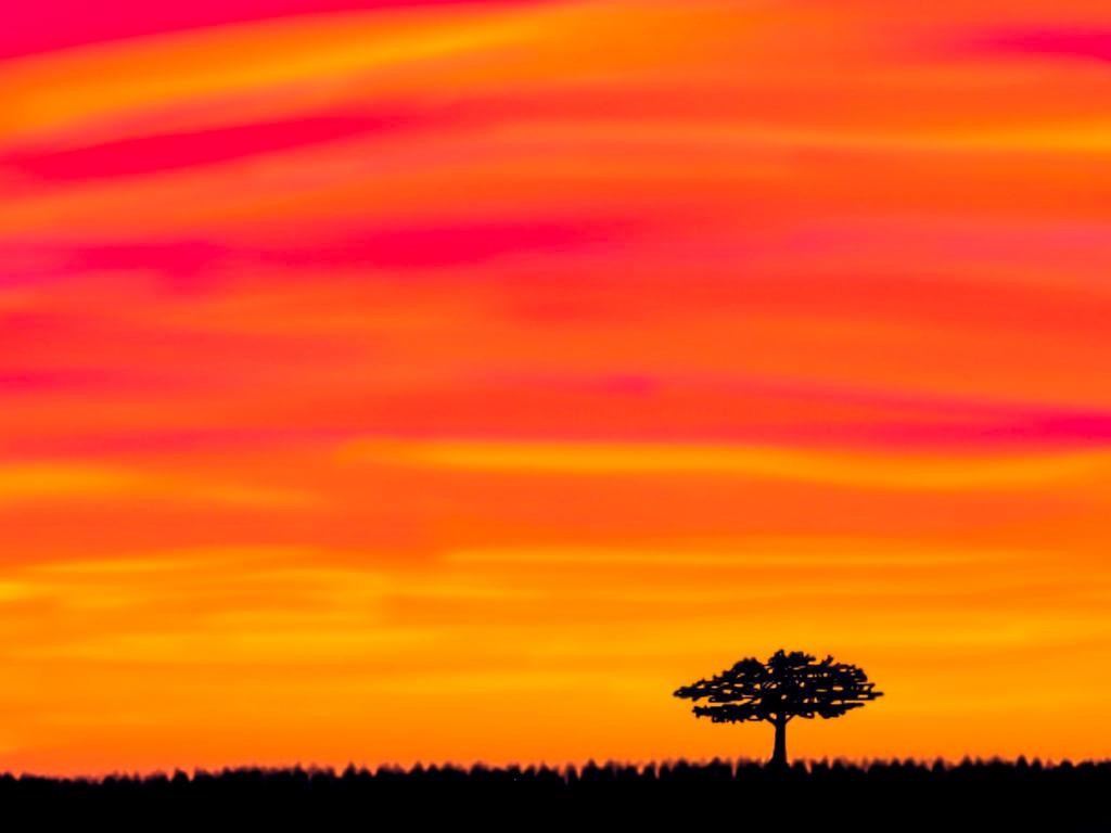 Sunset #4 by FantasyArt99
