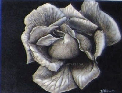 Bloom by SLSistrunk