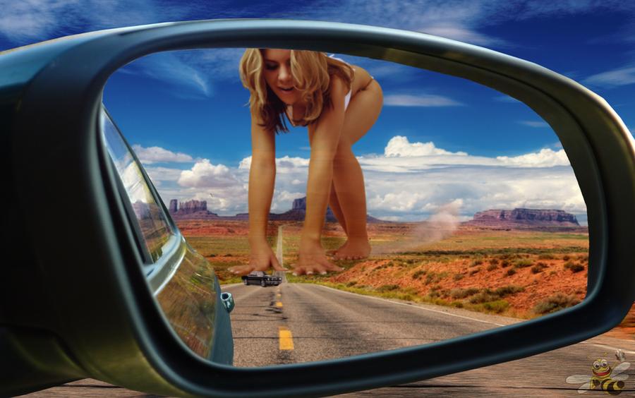 Objects In Mirror... by LittleBee8705
