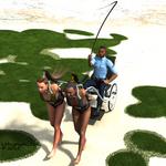 Island Patrol