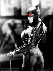 Catwoman - Batman: Arkham City by yayacosplay