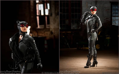 Arkham City Catwoman on the loose