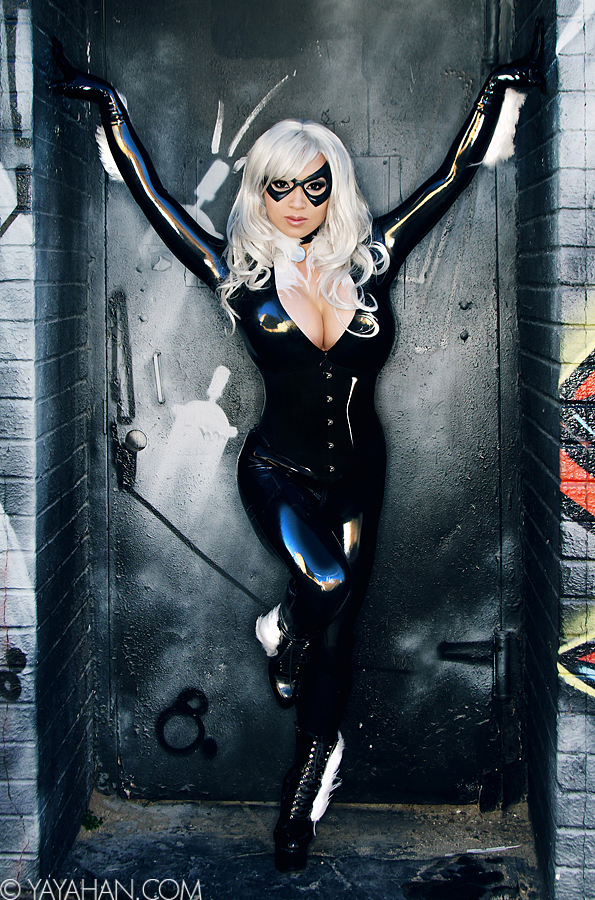 Black Cat in the Alley