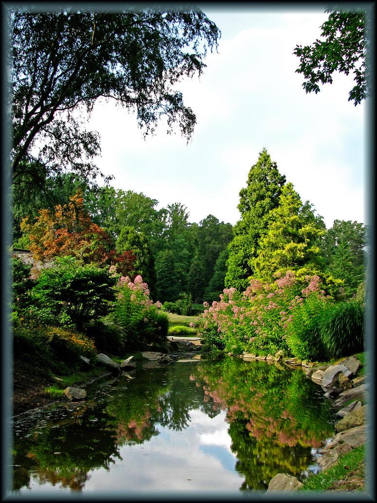 Love's garden by vungtau