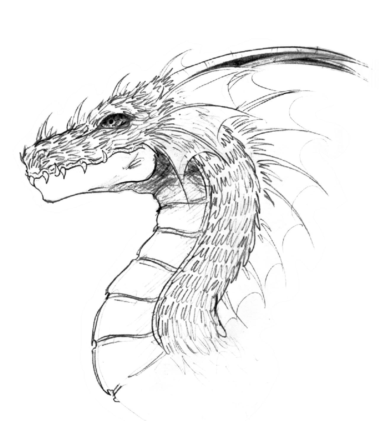 Dragon head by lastwarrior14 on DeviantArt