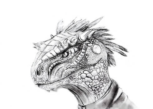 Argonian face (scanned version) by Spynder4