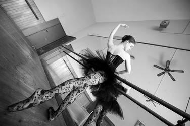 Black swan by GrimildeMalatesta