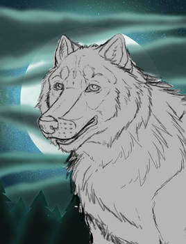 YCH Auction: Wolf