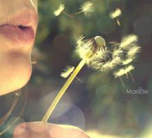 daydream believer by marielliott