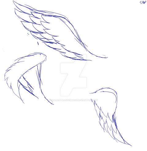 Wing practice 2 :0 by StarCatRandomness