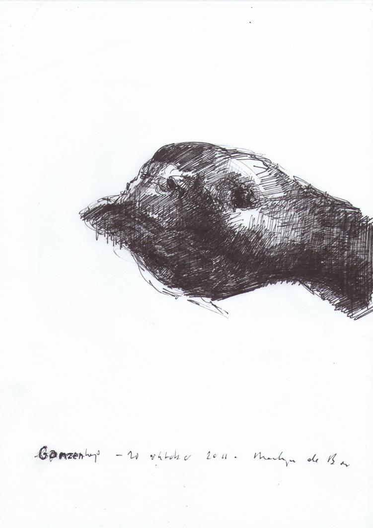 Goose Head - 20102011 by AEnigm4