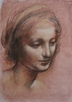 da Vinci - Study 1