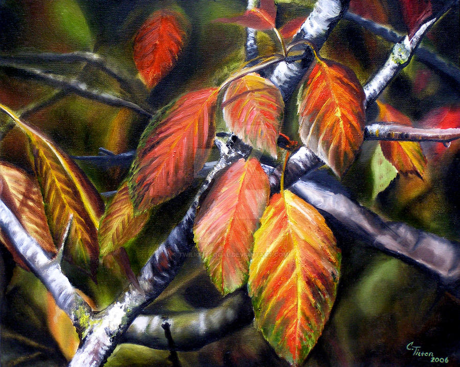 Landscape Nature Oil Paintings By Carrie By TwilightLocal On DeviantArt