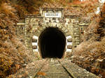 Maniel Tunel