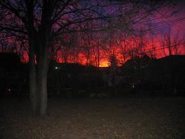 Sunrise Backyard by greyorm