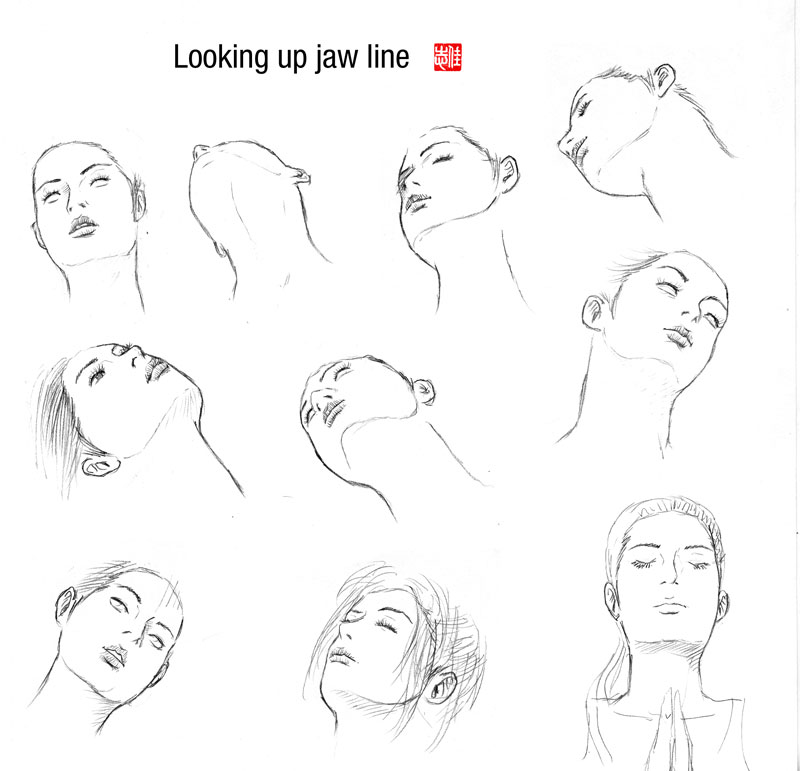 Line Drawing Nose : Looking up jaw line by randychen on deviantart