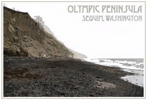 Olympic Peninsula Postcard