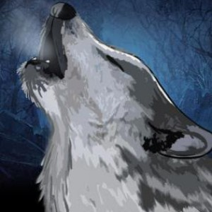 whitewolfgaming1's Profile Picture