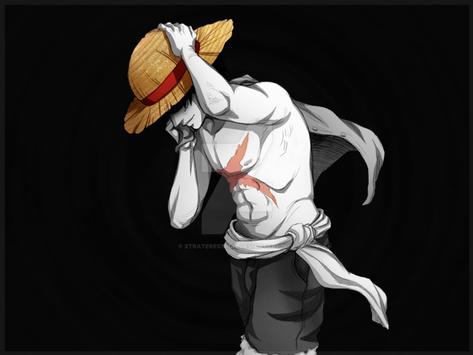 Luffy Hat and Scar
